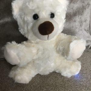 rem pod ghost hunting boo bear