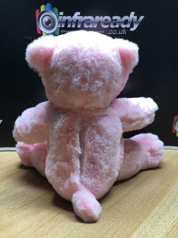 REM proximity bear ghost hunting haunted doll